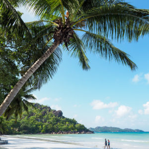 10 REASONS TO GO TO  SEYCHELLES